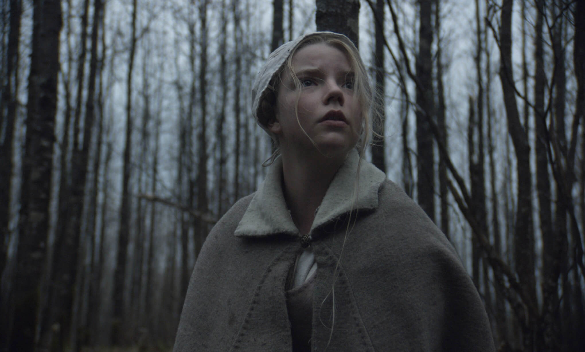 The Witch 2015 Feature Article Fear of the Woods